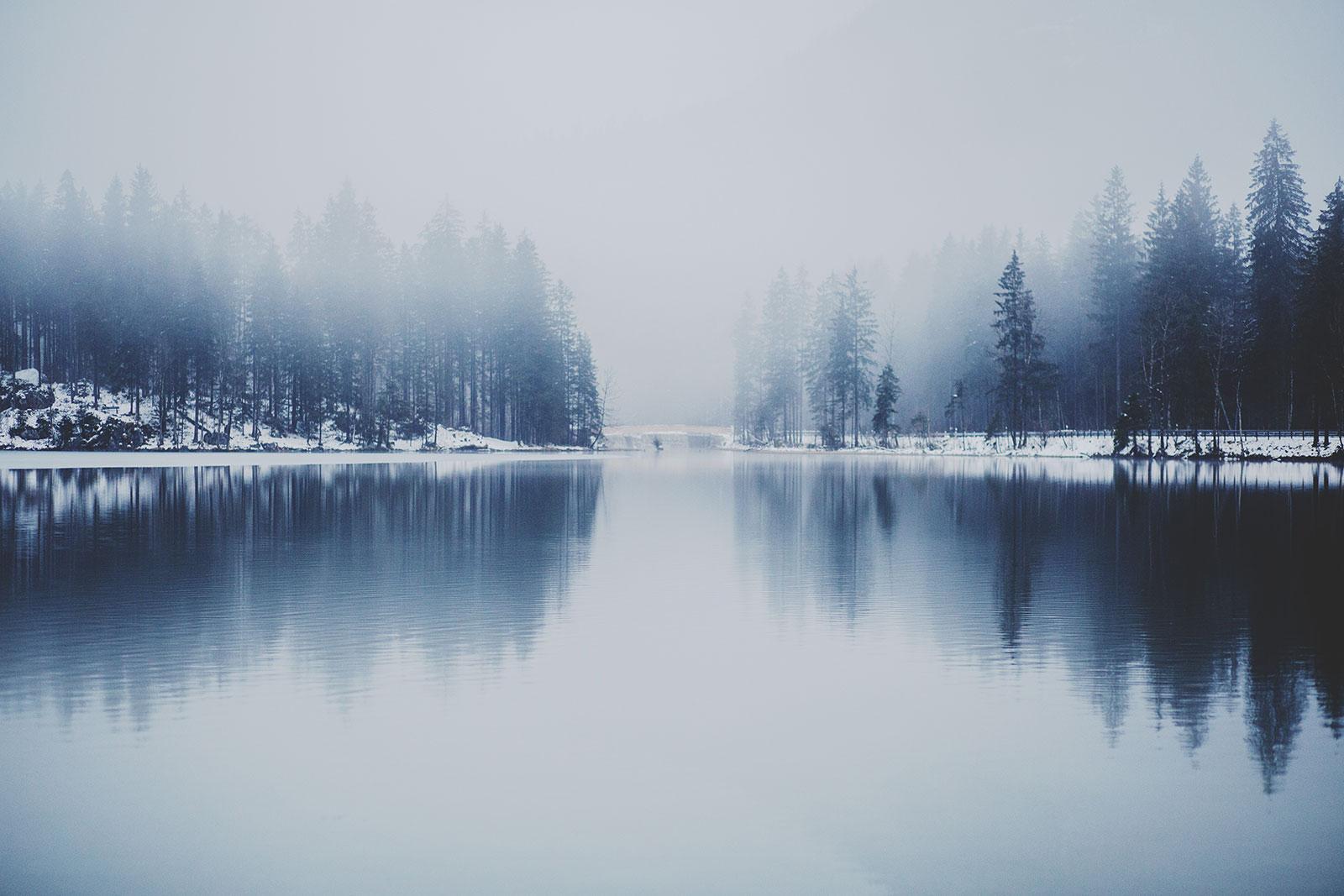 snowscene2.jpg